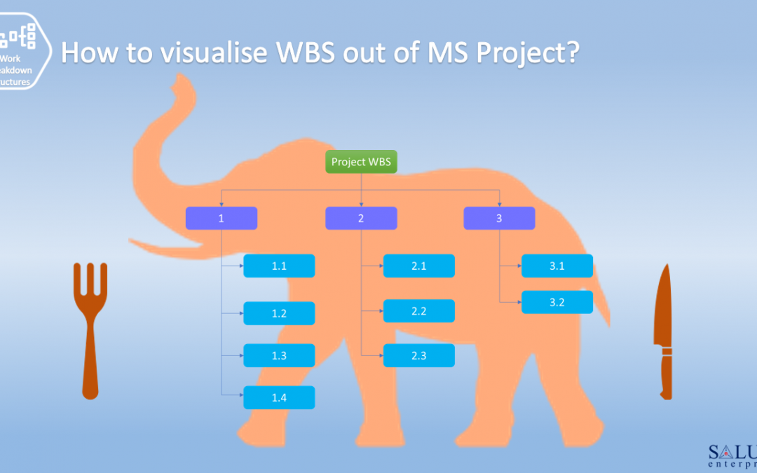 How to visualise WBS out of MS Project?